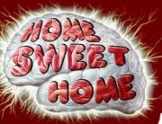 29-brain-home
