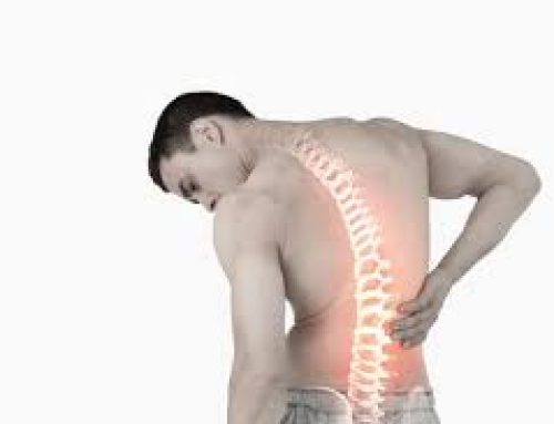 Preventing Low back Pain Through Exercise